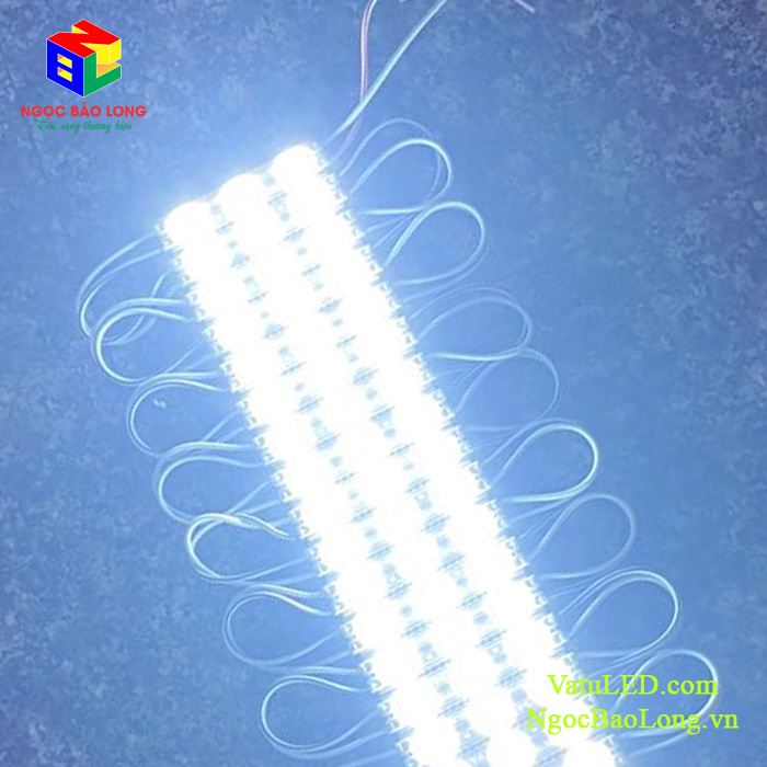 LED Module 3 bóng 6011 ánh sáng trắng