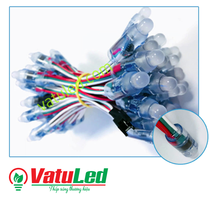 LED FULL MÀU FULL COLOR 1903